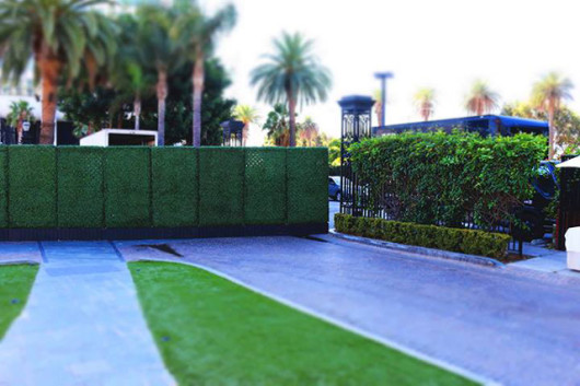 How To Get Privacy For Your Event And Guests Red Carpet