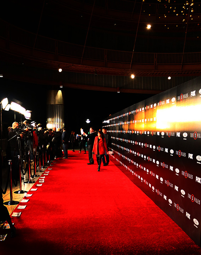 Red Carpet Setup Ideas